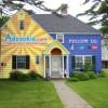 Adzookie Paint My House