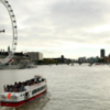 A pleasure cruise boat travels along the river Thames in front of the Houses of Parliament and the London Eye on October 22, 2010.