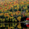 Fall colours in Canada.